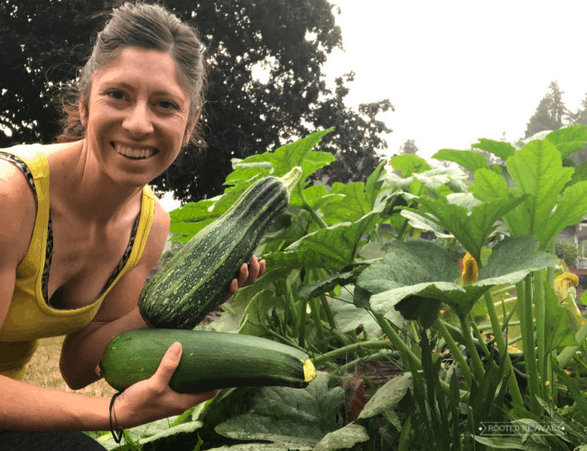 Woman holding two large zucchinis in front of zucchini plant