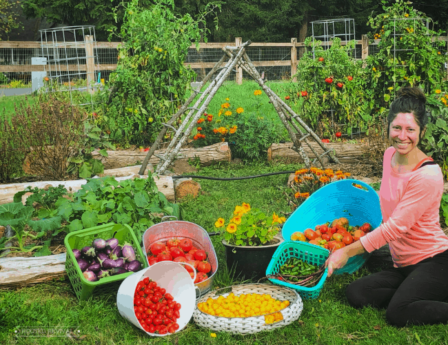 Woman sitting in front of garden beds with baskets full of produce