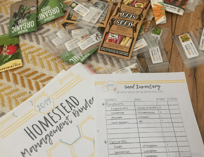 Seeds laid out on a yellow rug in front of paper title Seed Inventory