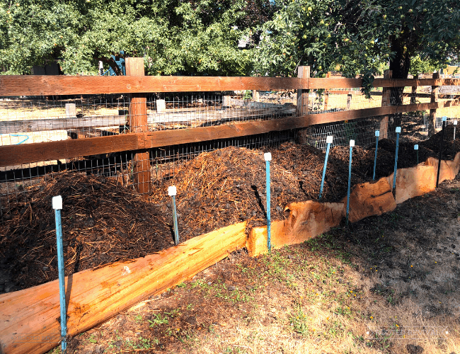 Piles of compost in a row